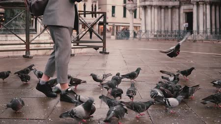 Happy excited female reporter with camera walks on autumn San Marco square and flock of pigeons in Venice slow motion. Stock Footage