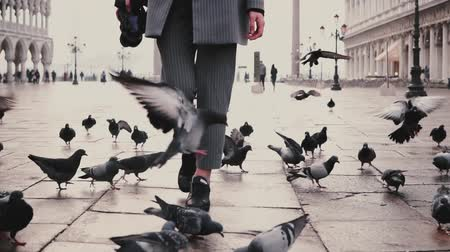 Low angle female tourist legs with camera walking on San Marco square with flock of pigeons in Venice, Italy slow motion