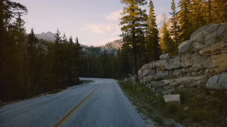 verhuizen : POV camera in car moving along beautiful forest mountain road between rocks on sunset in Yosemite park slow motion. Stockvideo