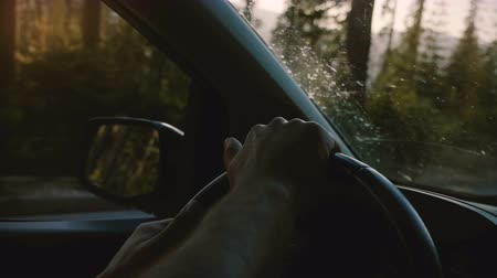 vibes : Beautiful close-up shot of two male hands holding car steering wheel driving along forest road in Yosemite slow motion.