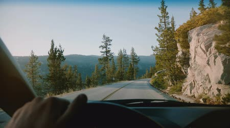 verhuizen : Beautiful first person view of male hand holding car steering wheel driving along mountain road in Yosemite slow motion.