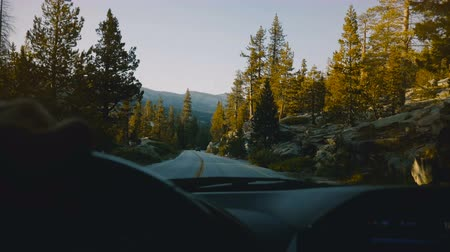 runaway : Beautiful view from behind car steering wheel, driving down the mountain woods road in sunset Yosemite park slow motion.