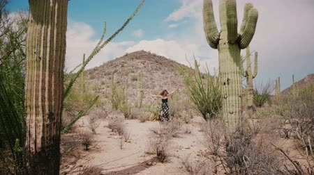 sudoeste : Slow motion camera moves towards young beautiful woman spinning happy among big Saguaro cactus national park desert. Stock Footage