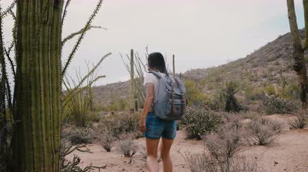 sudoeste : Slow motion young happy female tourist with backpack exploring incredible huge cactus desert at American national park.