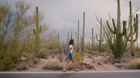 ikonický : Slow motion wide shot, happy young adult tourist woman walking along amazing wild cactus desert road in national park.