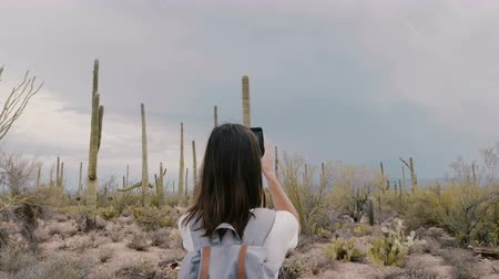 sudoeste : Slow motion back view young tourist woman taking smartphone photo of storm cloud over epic desert cactus national park.