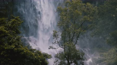 el değmemiş : Beautiful medium shot of green tree in front of large jungle waterfall rushing down in exotic windy Sri Lanka forest. Stok Video