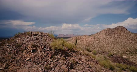 феникс : Drone flying around large stone hill with lone cactus on top in amazing stormy desert at Arizona national park reserve.