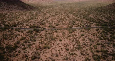 феникс : Drone panning left tracking car moving along desert road in giant cactus field scenery in epic Arizona national park USA
