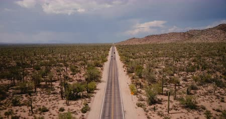 anka kuşu : Drone flying forward above beautiful desert road with cars in big atmospheric cactus field in Arizona national park USA.