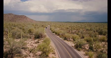 феникс : Drone tilts down on car moving along desert road in the middle of amazing cactus field at Arizona national park USA.