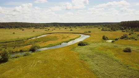 kelet európa : Drone flying low over summer meadow and river. Aerial shot of calm countryside valley landscape. Bright sunny field 4K. Stock mozgókép
