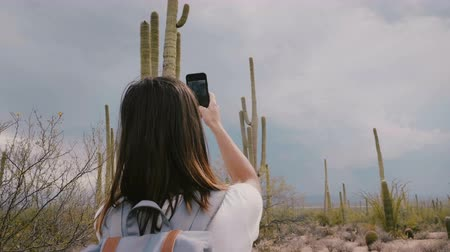 icônico : Slow motion happy young adult tourist woman taking smartphone photo of huge Saguaro cactus at national park in Arizona.