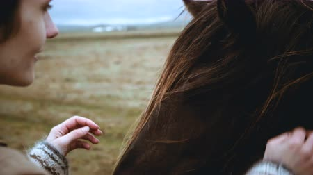 poney : Close-up view of young woman stroking the mane Icelandic horse grazing on the field. Traveling female walking on nature.