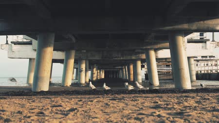 baltské moře : Under the pier on the Baltic Sea in winter