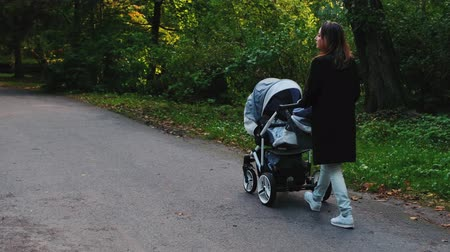 sáně : Mother walking with a pram in the park