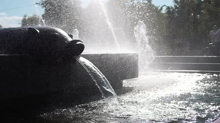 finale : Water fountain in park at sunset. Slow motion.