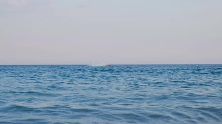 su üzerinde ufuk : POV of a person looking for a shore. First-person view. Low angle of view. Close to water surface 4k video footage Stok Video