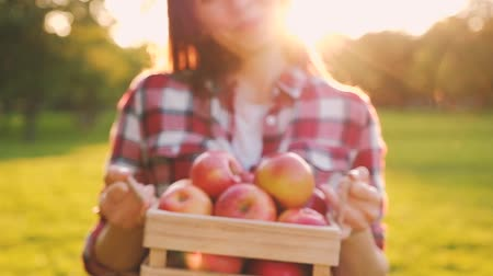 crate : Young slim blurry woman in casual wear gives a wooden crate Stock Footage