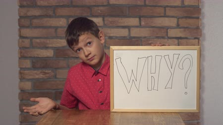 flip chart : Portrait little boy showing whiteboard with handwriting word why. Schoolboy with asking on his face. Preadolescent wearing in casual red shirt.
