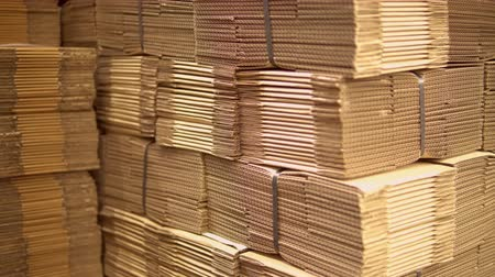 stockpile : cardboard boxes in warehouse or factory waiting for packing and shipping Stock Footage