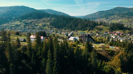 drone flies over the pines in the direction of the mountains morning in highlands