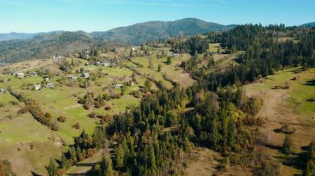 drone flies down on a coniferous forest on a sunny day in a mountainous area on the background mountain autumn season paysage