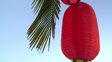 Single red paper lamp with green palm tree. Bottom up shot of Chinese lantern.