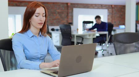 Business woman working on laptop at workplace. Stylish beautiful woman doing important job.