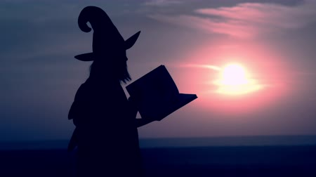 hag : side view evil sorceress in hat walking open spell book view on night blue sky halloween holiday Stock Footage