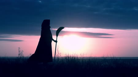 besom : side view sorceress in fluttering cloak holding broom posing on field on the background a blue sky with clouds all saints night slow motion
