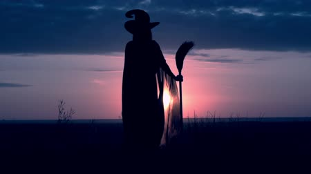 soletrar : a witch in a hat and cloak holds a broom standing in a field looks at a blue sky with rain clouds slow motion Vídeos