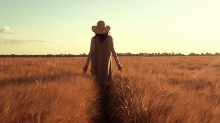 granger : back view woman walking along idyllic landscape with yellow wheat golden light sunset in countryside
