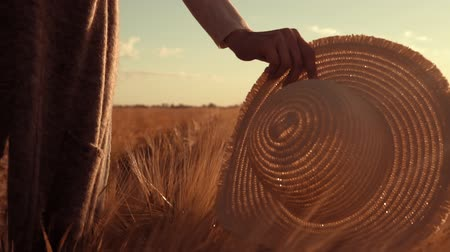 margen : b roll female walks on the field with wheat the suns rays shine through a straw hat
