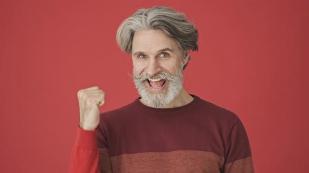 cavalheiro : Attractive satisfied gray-haired bearded man in red sweater doing a winner gesture isolated over red wall
