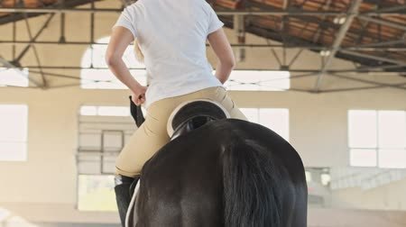 kobyla : Cropped back view of blonde girl is riding a horse in the covered stable
