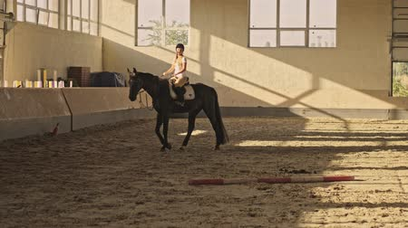 égua : A young blonde girl is training to ride a horse in the covered stable Vídeos