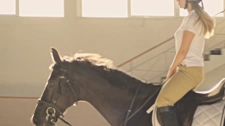 stabilní : An attractive focused young blonde girl is ridding a horse in the covered stable
