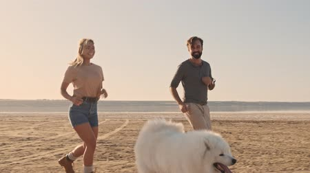 chlupatý : A happy smiling young couple man and woman are running with a dog samoyed on the lake in summer Dostupné videozáznamy