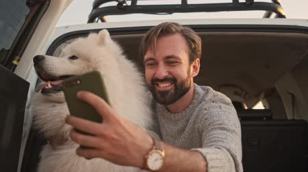 samoyedo : A good looking man is taking a selfie with a  big white dog while sitting in the trunk outdoors in summer Archivo de Video