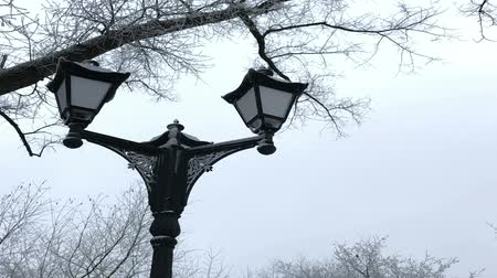 antiquado : Old-fashioned lantern in a winter park. Everything around is covered with thick frost.