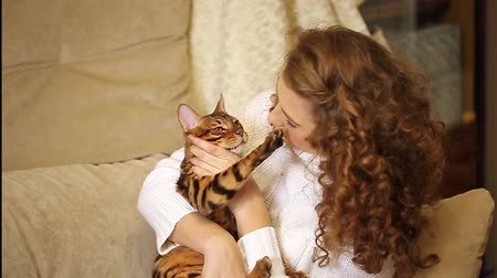 elkényeztet : Young girl playing with a pet. Bengal cat. Girl hugging and stroking a cat. Home comfort. Best friends.