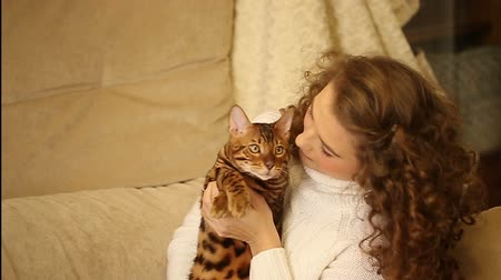 breeder : Young girl playing with a pet. Bengal cat. Girl hugs and bites the cats ear. Home comfort. Best friends.