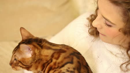 elkényeztet : Young girl playing with a pet. Bengal cat. Girl hugging and playing with the cat. Home comfort. Best friends. Close-up.