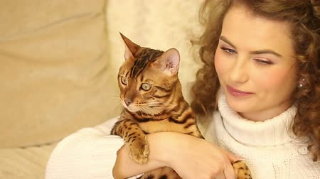 elkényeztet : Young girl playing with a pet. Bengal cat. She kisses and talking cat. Home comfort. Best friends. Close-up. Stock mozgókép