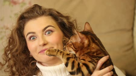 elkényeztet : Bengal cat and girl having fun bite each other. Games with animals. Home comfort. Friends.