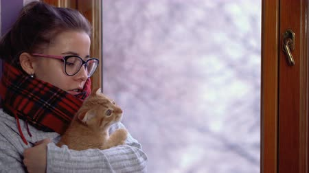 Cute girl in glasses. Shes wearing a warm sweater and scarf. Home cosiness. Winter in street. Lop-eared cat. Christmas mood. Dostupné videozáznamy