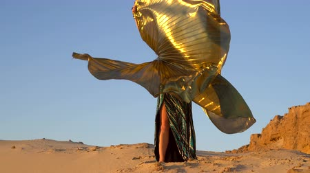butterflies in the stomach : Oriental beauty dancing belly dance with golden wings. Delightful and alluring grace of movements. Girl dancing in the desert.