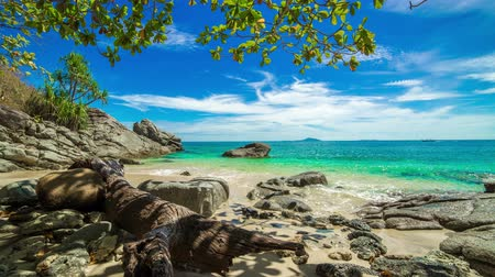 oceânico : 4K TimeLapse. Old tree and stones in the water on a deserted beach in Phuket