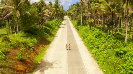Aerial view of young couple of tourists walking on the road among coconut palms. Bali island, Indonesia Стоковые видеозаписи